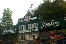 Pulaski Yankees Minor League Baseball