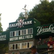 Pulaski Yankees Minor League Baseball