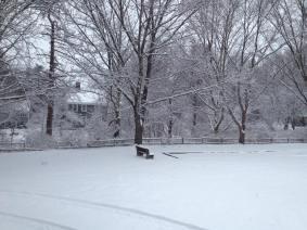 Middleboro Snow