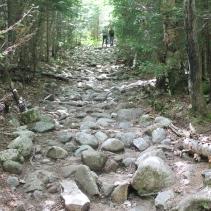 Mt. Willard Hike