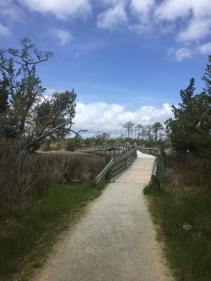 Tideland Trail, Cape Carteret, NC